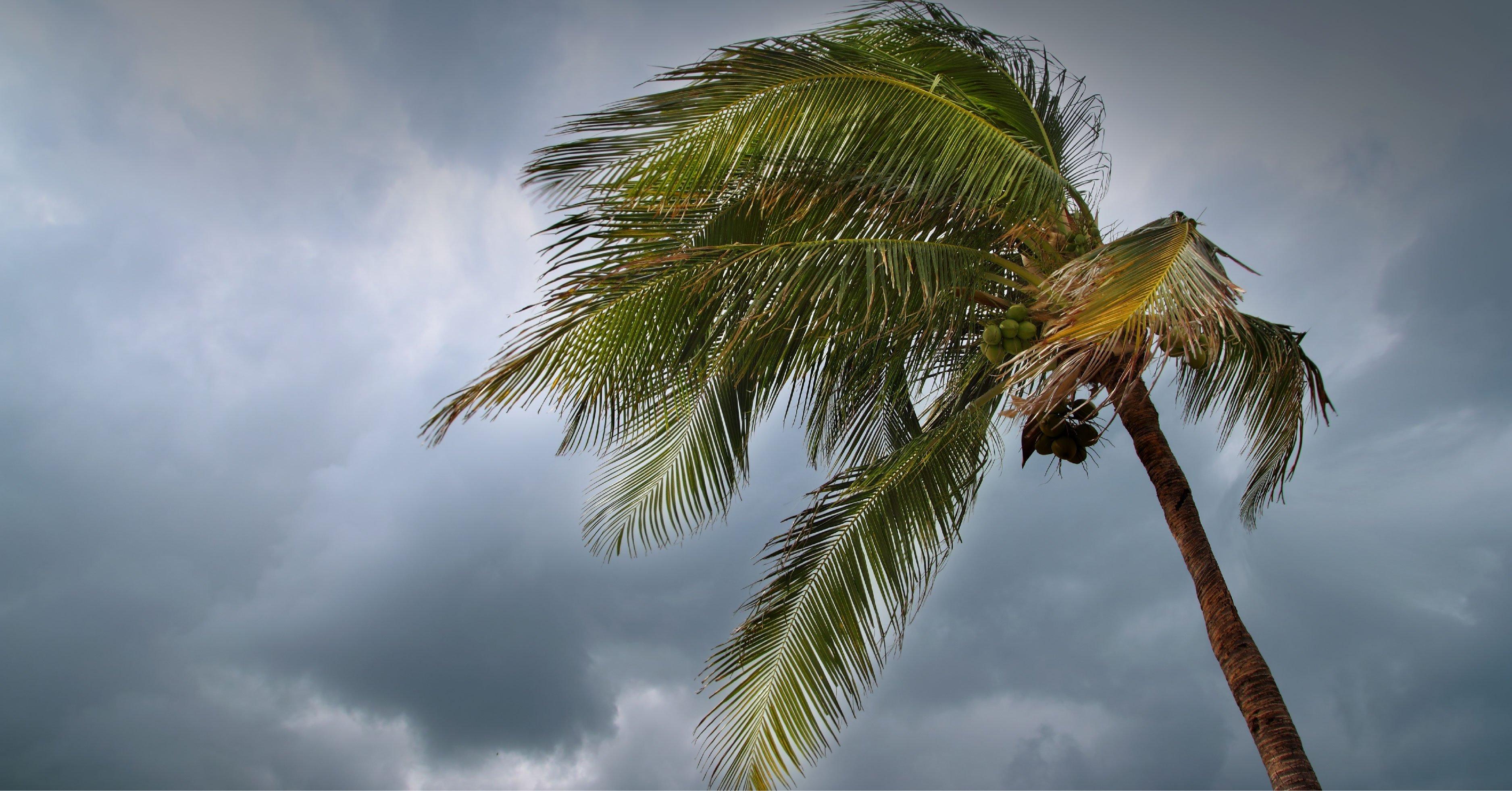 Temporada de huracanes 2021, lo que debes saber al respecto